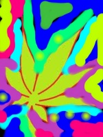 POT PICTURE-ANA CHRISTY