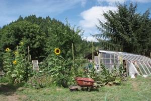 Garden-in-Bloom-Alpha-Farm-2009