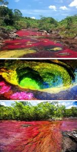 a98876_real-place_9-canos-cristales