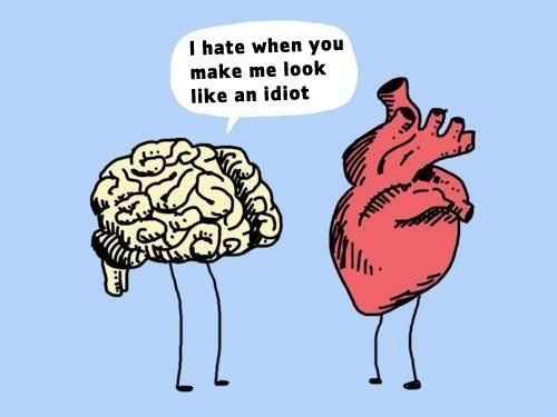 Image result for brain fight