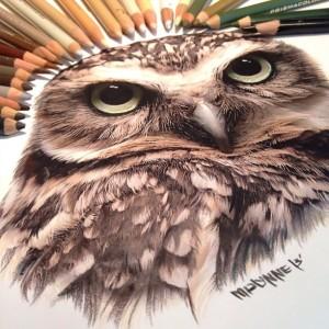 karla-mialynne-owl