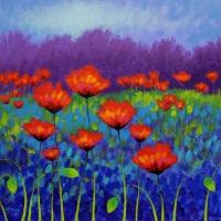 Poppy-Meadow-24x24