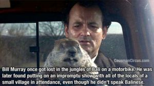 bill-murray-really-is-the-most-interesting-man-in-the-world-6