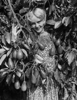 avocado-woman-photo-dick-stagg