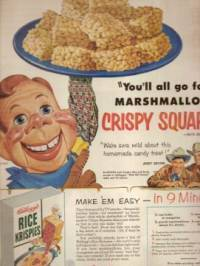 crispy-squares