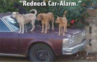 Redneck%20Car%20Alarm