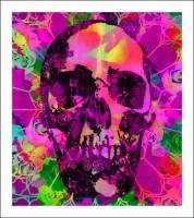 Ben-Allen-Psychedelic-Skull (2)