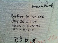 graffiti-inspirational-love-quote-writing-Favim.com-228324